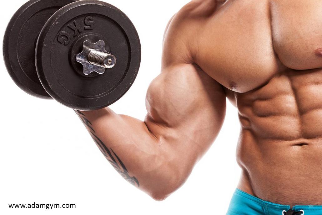 Ini Dia Tips Bagi Fitness Pemula