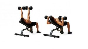 incline-dumbbel-press-by-adamgym-indonesia