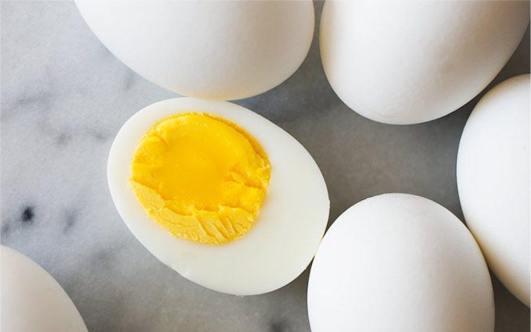 Kandungan Gizi Pada Telur